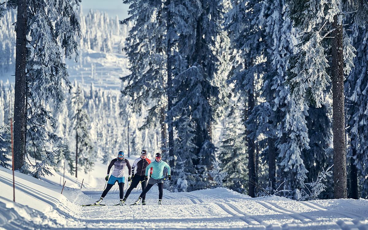 Langlaufen Wellnesshotel Bayerischer Wald
