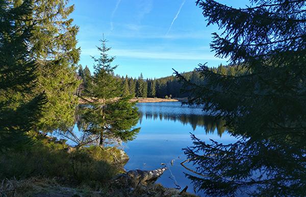 Badeseen Bayerischer Wald